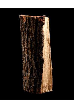 40 zakken gedroogd eikenhout a 9 kg